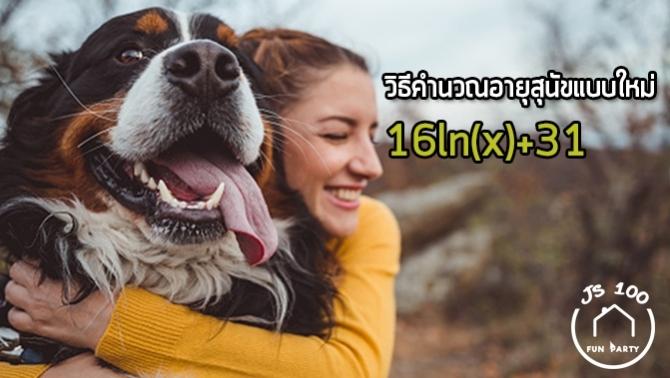 นักวิทยาศาสตร์ค้นพบหลักการคำนวณอายุสุนัขแบบใหม่ ลบล้างความเชื่อ 1=7